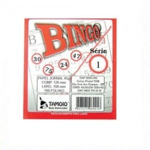 Bloco Bingo - Tamoio - Jornal - 100 Folhas